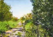 Country lane, East Riding