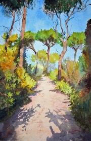 Forest walk, Skiathos