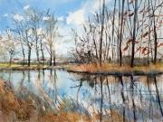 Winter-walk-Leven-canal