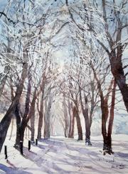 Winter in Wassand Lane